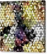 Ocotillo Abstraction Canvas Print