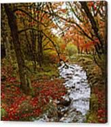 October In Oregon Canvas Print