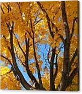 October Sky 1 Canvas Print