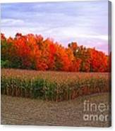 October Sunset On The Autumn Woods Canvas Print