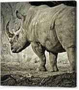Odd-toed Rhino Canvas Print