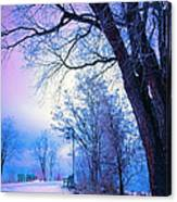 Of Dreams And Winter Canvas Print