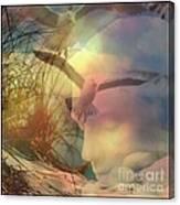 Of Lucid Dreams / Dreamscape 12  Canvas Print