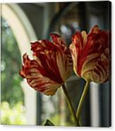 Of Tulips And Windows Canvas Print