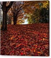 Ohio Fall Scenery Canvas Print
