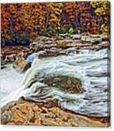 Ohiopyle Falls 2 Canvas Print