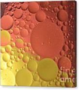 Oils Spots  Canvas Print