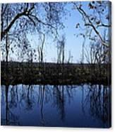 Okefenokee Reflection Canvas Print