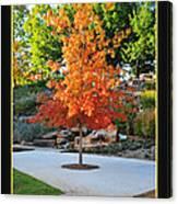 Oklahoma Fall Canvas Print