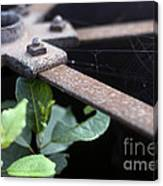 Old Agricultural Instrument Canvas Print