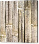 Old Bamboo Fence Canvas Print
