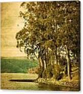 Old Bay Canvas Print
