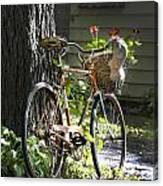 Old Bicycle And Hat Canvas Print
