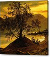 Old Birch Tree At The Sognefjord Canvas Print