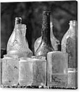Old Bottles Two Canvas Print