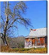 Old Cabin And Tree Canvas Print