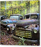 Old Cars Canvas Print