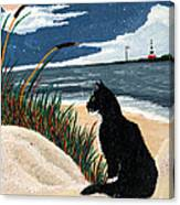Old Cat And The Sea Canvas Print