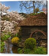 Old Cherry Blossom Water Mill Canvas Print