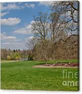 Old Elm Haverford College Canvas Print