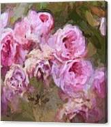 Old English Pink Canvas Print