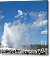Old Faithful. With Thanks To Lee Canvas Print
