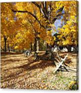 Old Farmroad With Autumn Colors Canvas Print