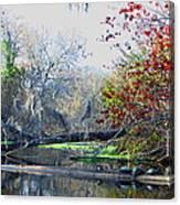 Old Florida Along The Sante Fe River Canvas Print
