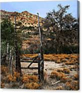 Old Gate At Oak Flats Canvas Print