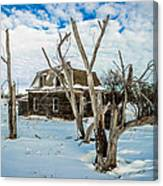 Old House 3 Canvas Print
