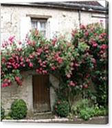 Old House Covered With Roses Canvas Print