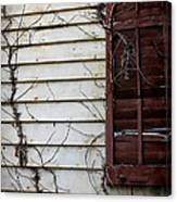 Old House Red Shutter 4 Canvas Print