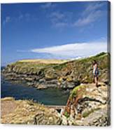 Old Lizard Head And Polpeor Cove Canvas Print
