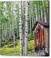 Old Outhouse Among Aspens Canvas Print
