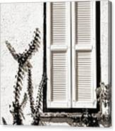 Old Painted Shutter 2 Canvas Print