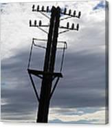 Old Power Pole Canvas Print