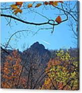 Old Rag Hiking Trail - 121212 Canvas Print