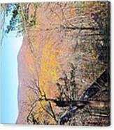 Old Rag Hiking Trail - 121215 Canvas Print