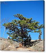 Old Rag Hiking Trail - 121238 Canvas Print