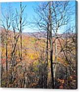 Old Rag Hiking Trail - 12128 Canvas Print