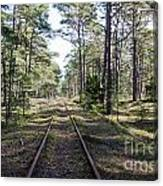 Old Railroad Tracks Canvas Print