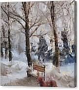Old Red Playing In The Snow  Canvas Print