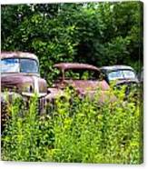 Old Rusty Cars Canvas Print