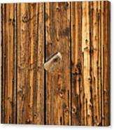 Old Shed Door Canvas Print