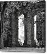 Old Sheldon Church Side View Canvas Print