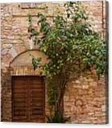 Old Stone House With Plants  Canvas Print