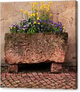 Old Stone Trough And Flowers In Alsace France Canvas Print