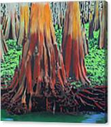 Old Swampy Canvas Print
