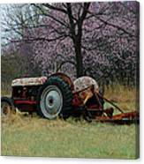 Old Tractor And Redbuds Canvas Print