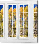 Old Triple16 Pane White Window Colorful Autumn Aspen Forest View Canvas Print